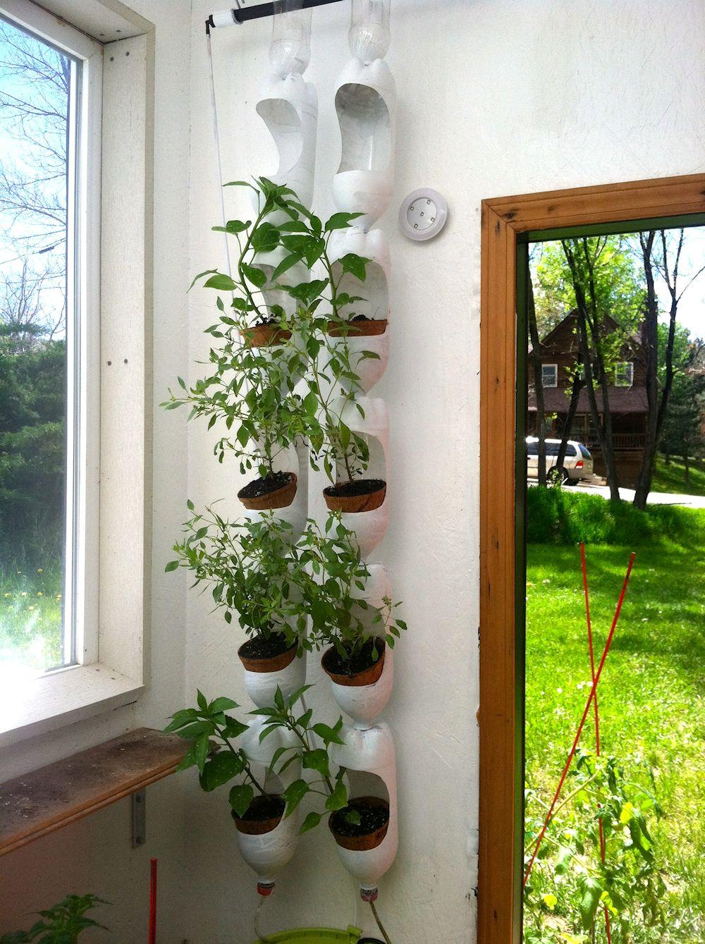 Ideas para armar una huerta en poco espacio jardiner a y plantas - Plastic bottle vertical garden ideas ...
